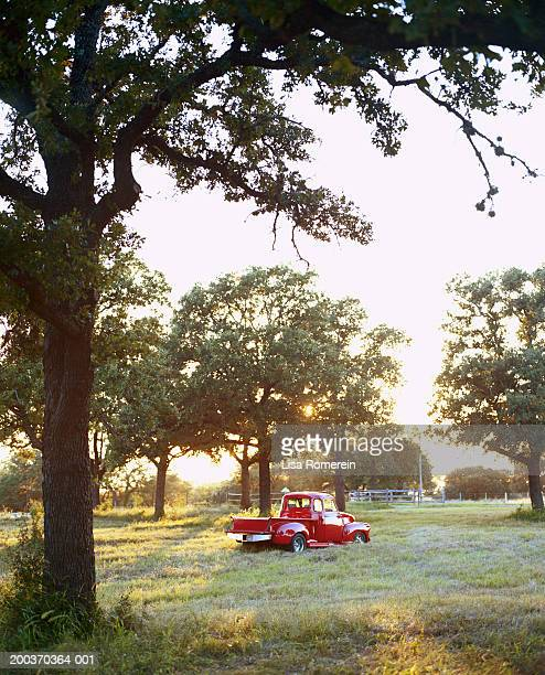 Red pick-up truck in field