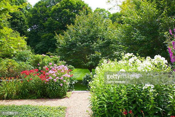 Red, pink and white perennials amid green garden