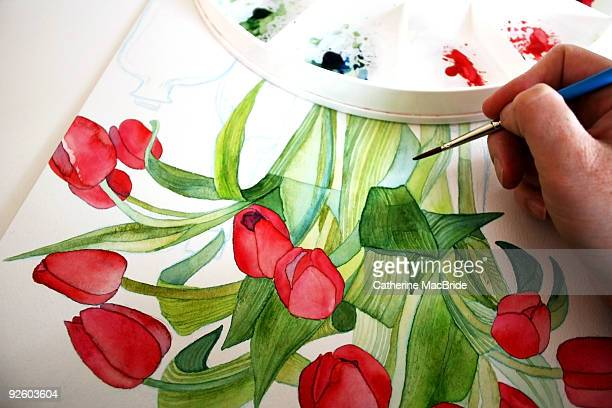 red poppy watercolour painting - catherine macbride stock pictures, royalty-free photos & images