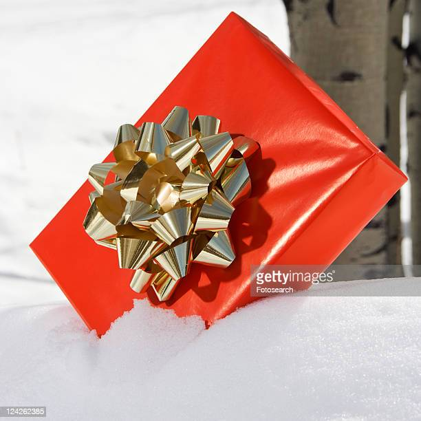 red present with gold bow placed in snow with birch tree in background. - christmas background stock photos and pictures