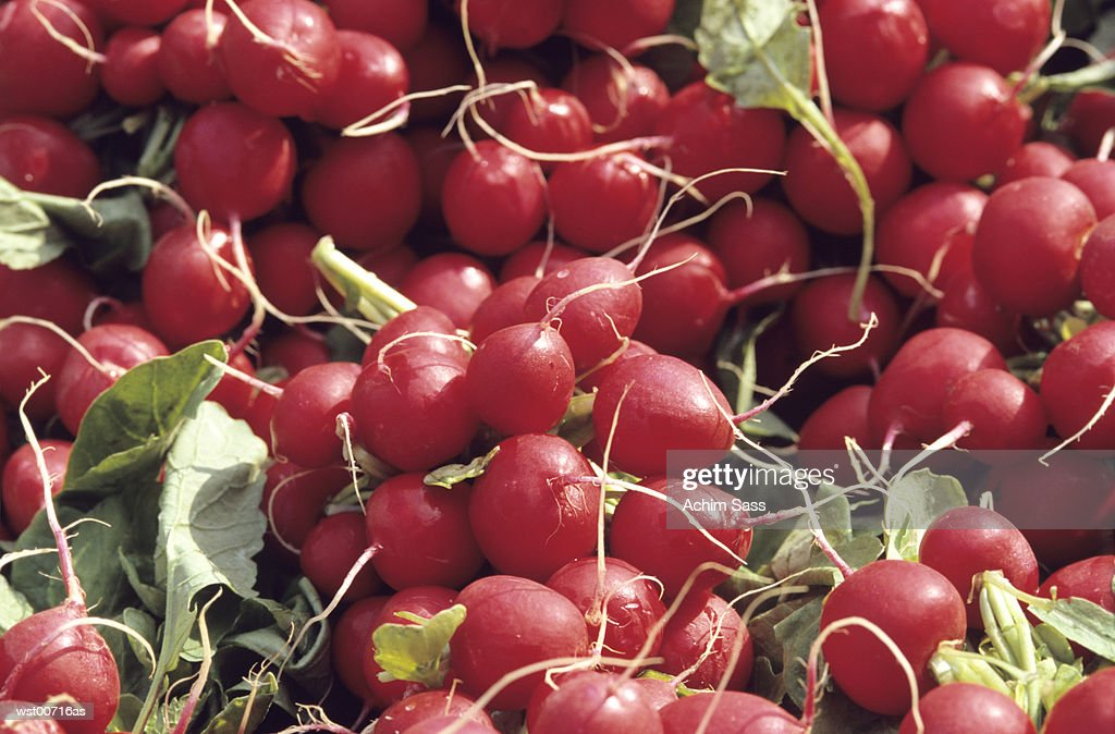 red radish, close up : Foto de stock