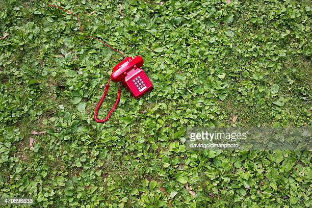 red retro telephone on grass - chatham new york state stock pictures, royalty-free photos & images