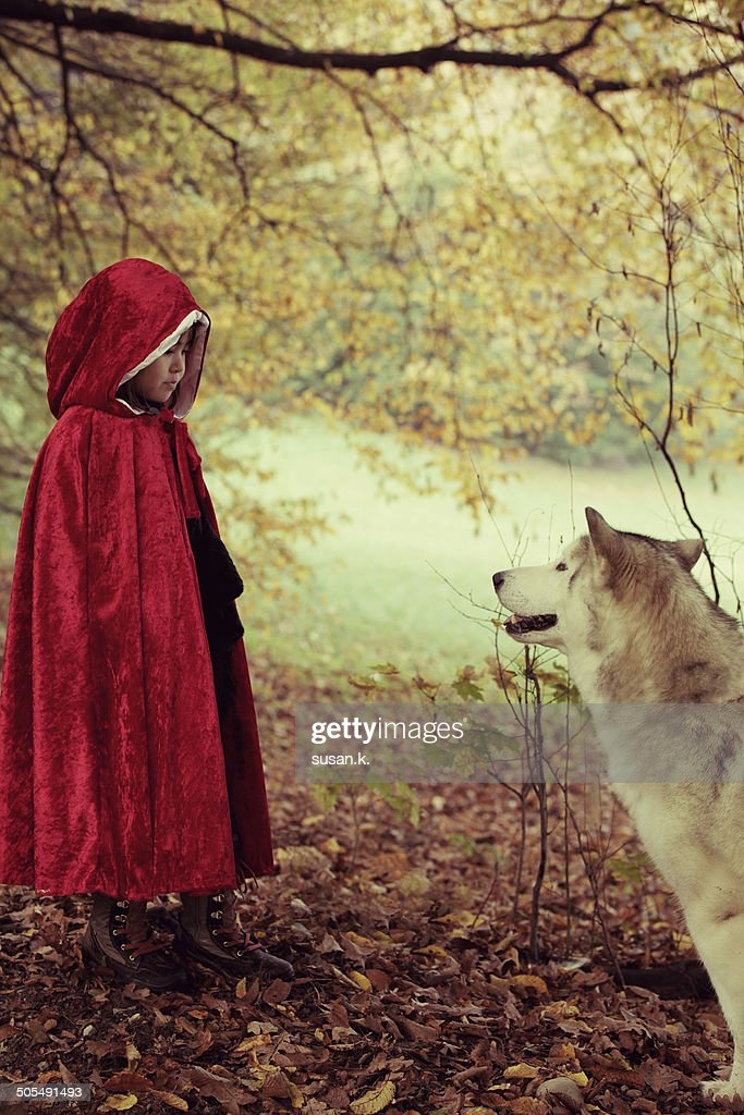 Red riding hood face to face with big bad wolf : Stock Photo