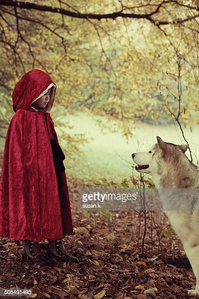 red riding hood face to face with big bad wolf - le petit chaperon rouge photos et images de collection