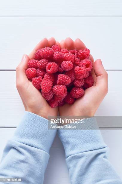 red ripe raspberries in the hands of a woman, on a white wooden background. girl holding berries, close-up. vegetarian, vegan, raw food. - 西シベリア ストックフォトと画像