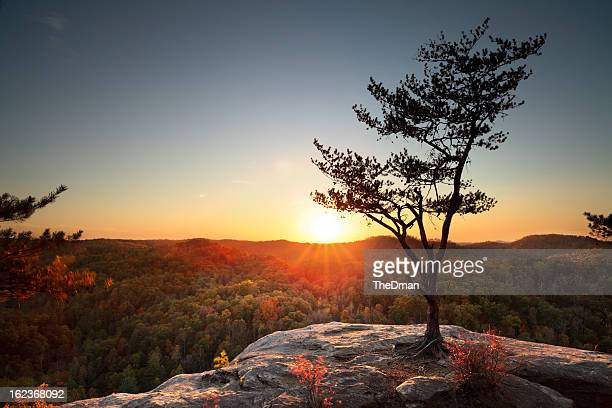 red river gorge sunset - kentucky stock pictures, royalty-free photos & images