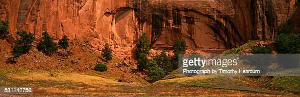 red rock wall - timothy hearsum stockfoto's en -beelden