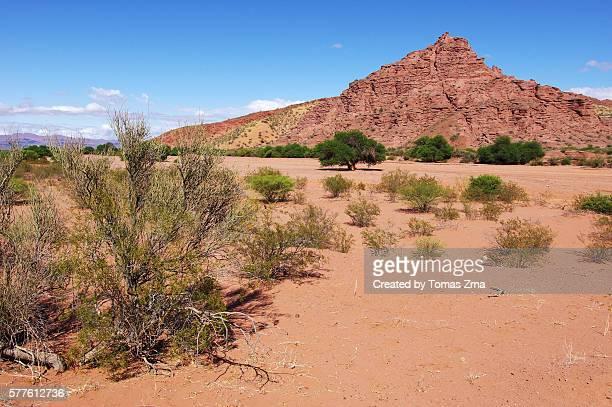Red rocks of Talampaya canyon