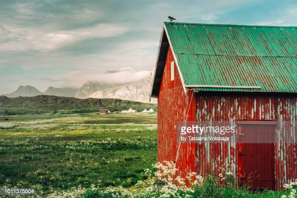Red rorbu, traditional Norwegian house in dramatic arctic landscape, Lofoten Islands, Norway