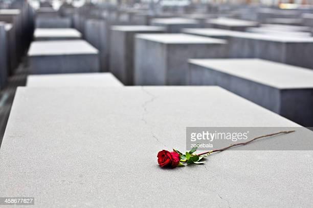 rote rose im holocaust memorial in berlin, deutschland - holocaust stock-fotos und bilder