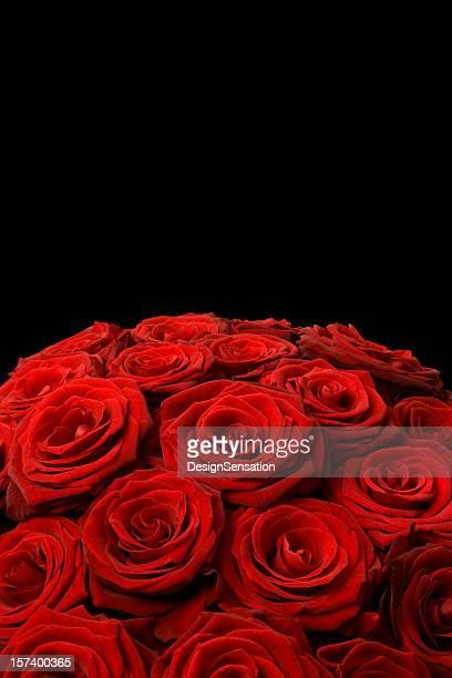 赤いバラのブーケにブラック
