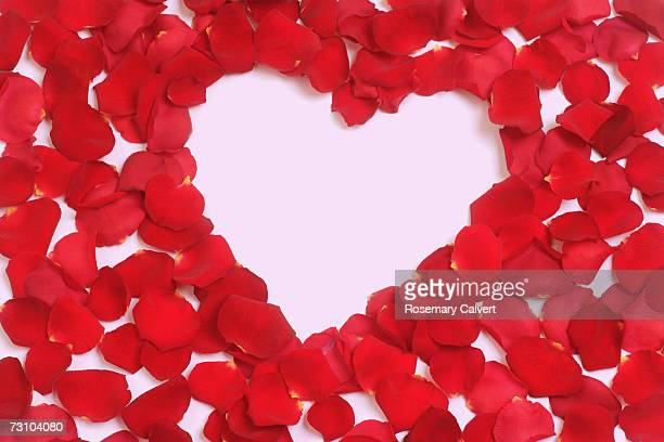Red rose petals in heart shaped, close-up