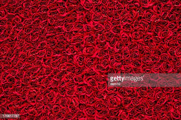 red roses background - rose stock pictures, royalty-free photos & images
