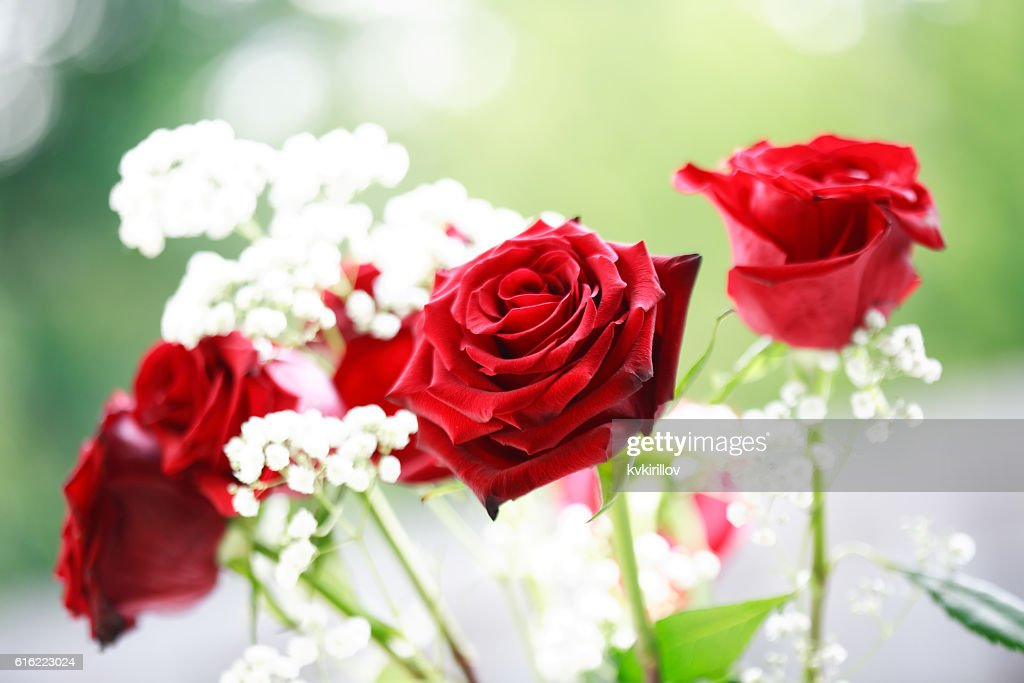 Rote Rosen Bouquet : Stock-Foto