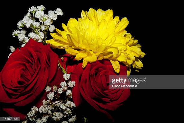 Red roses, chrysanthemums and baby's breath