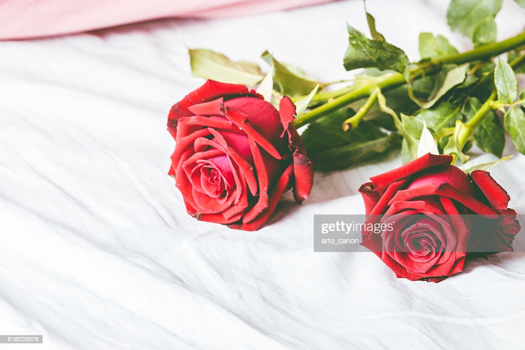 Red roses on bed background : Foto stock