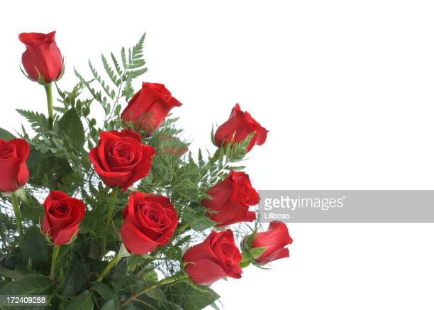 red roses (xl) - dozen stock pictures, royalty-free photos & images