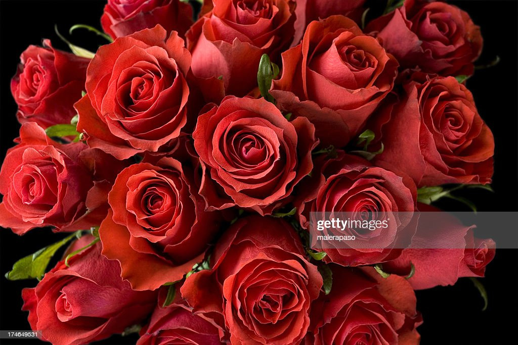 Dozen Roses Stock Photos And Pictures