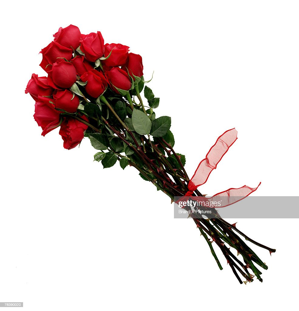 Red roses : Stock Photo