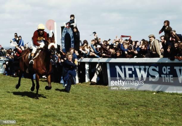 Red Rum winning his third Grand National at Aintree, England. \ Mandatory Credit: Allsport UK/Allsport