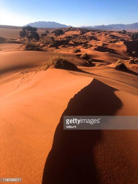 レッドサンドデューン風景シーン - ナミブ砂漠 ストックフォトと画像