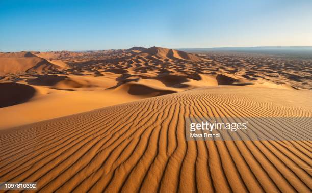 red sand dunes in the desert, dune landscape erg chebbi, merzouga, sahara, morocco - merzouga stock pictures, royalty-free photos & images