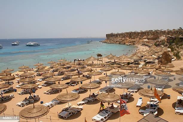 spiaggia di mar rosso - sharm el sheikh foto e immagini stock