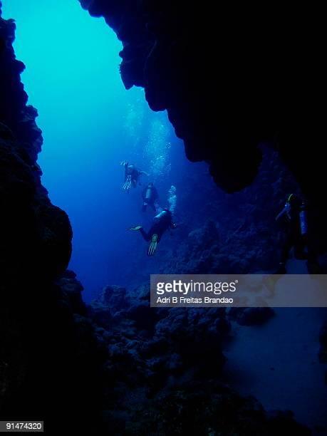 red sea underwater caves - シャルムエルシェイク ストックフォトと画像