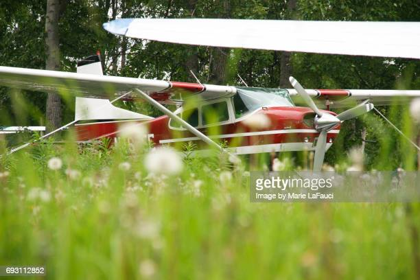 red seaplane in alaska - fauci stock pictures, royalty-free photos & images