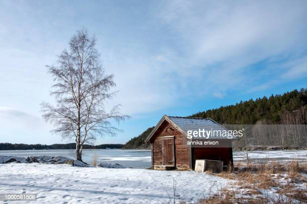 red shed and birch in wintry landscape
