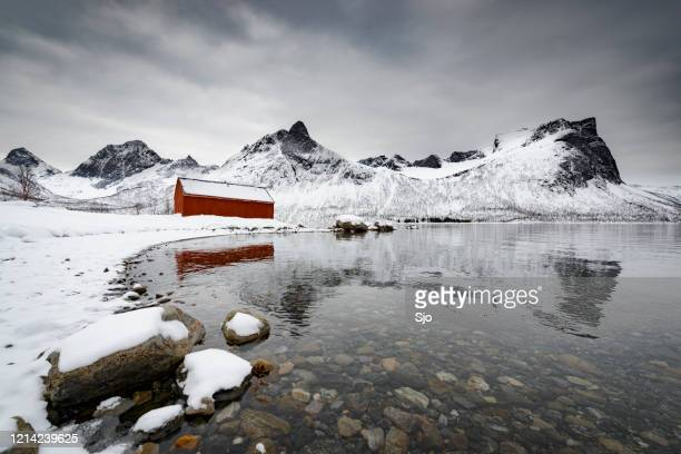 """red shed in a dramatic winter landscape on senja island in northern norway during winter - """"sjoerd van der wal"""" or """"sjo"""" stock pictures, royalty-free photos & images"""
