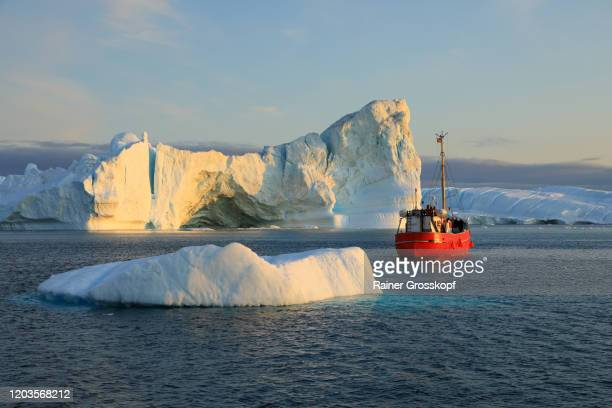 a red ship passing some icebergs in the icefjord in the warm light of the midnight sun - rainer grosskopf stock pictures, royalty-free photos & images