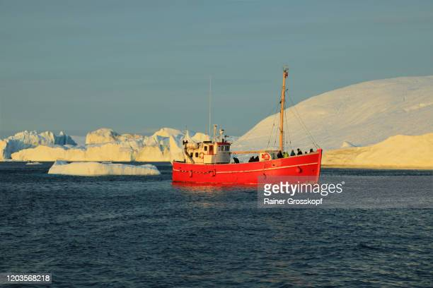 a red ship passing some icebergs in the icefjord in the warm light of the midnight sun - rainer grosskopf fotografías e imágenes de stock