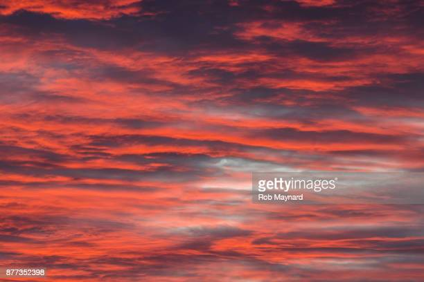 red sky - publisher stock pictures, royalty-free photos & images