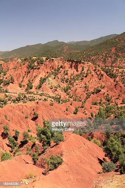 Red soil and foothills of the Atlas Mountains