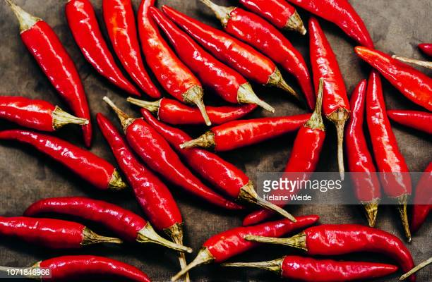 red spice peppers - chili pepper stock pictures, royalty-free photos & images