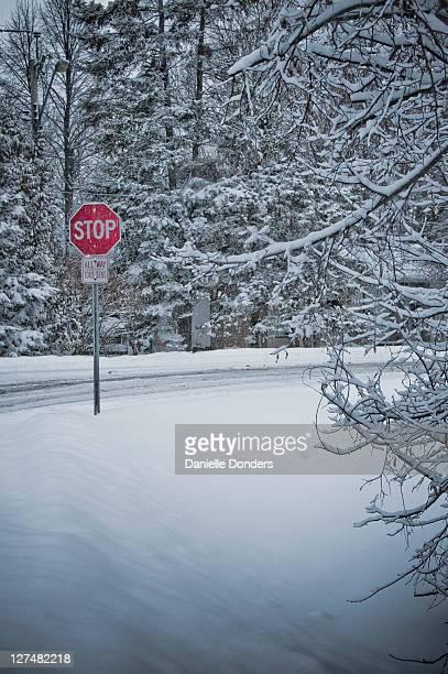 Red stop sign in snowy winter scene