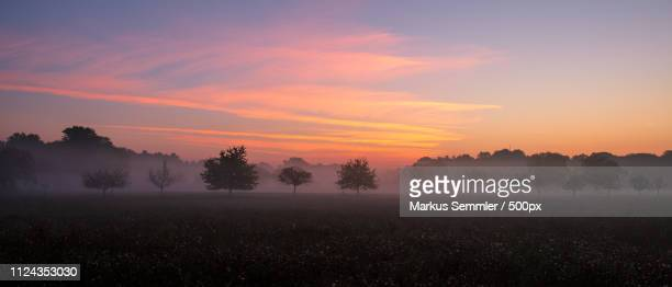 red sunrise on a foggy morning - sonne stock pictures, royalty-free photos & images