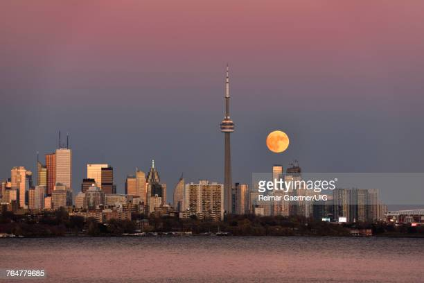red super moon rising over toronto skyline with pink and blue sky november 13 2016 - pink moon stock pictures, royalty-free photos & images