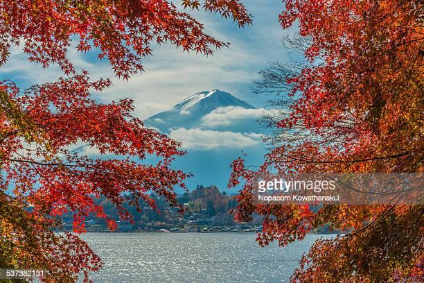 Red surround Fuji san