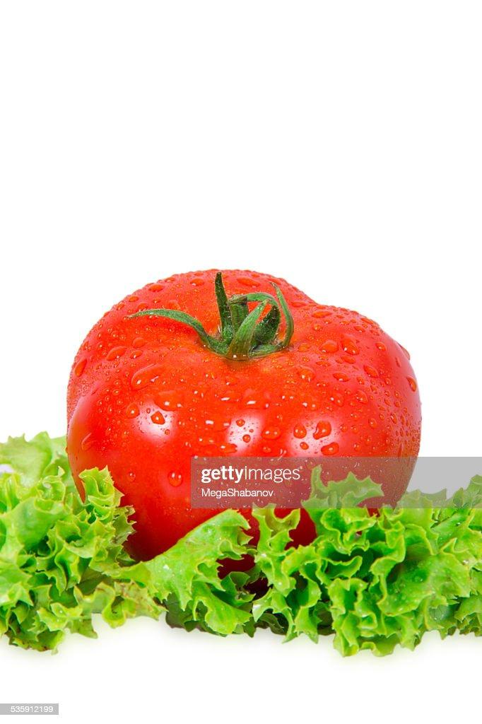 Tomate rojo : Foto de stock