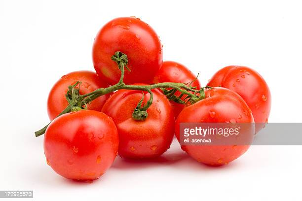 Red tomatoes still on the vine