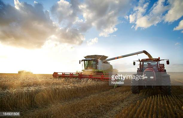 red tractor and combine - gewas stockfoto's en -beelden