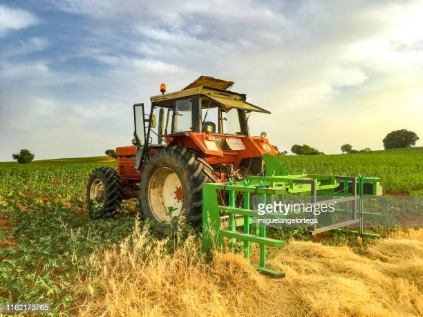 a red tractor in the country at sunset - tiller stock photos and pictures