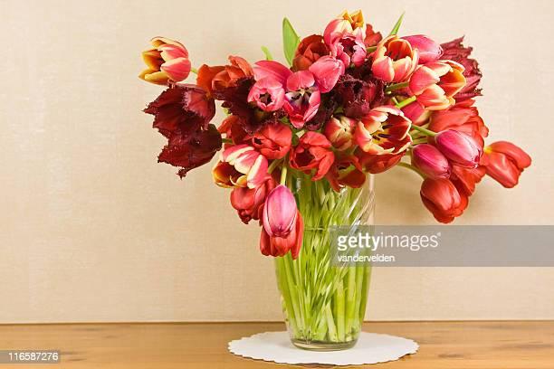 tulipanes rojos - doily fotografías e imágenes de stock