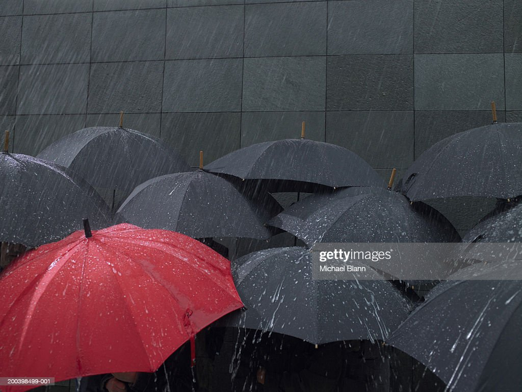 umbrella stock photos and pictures getty images