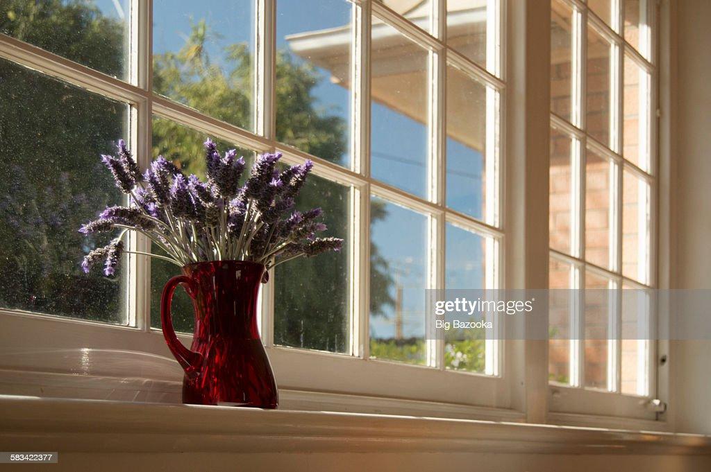Red vase : Stock Photo