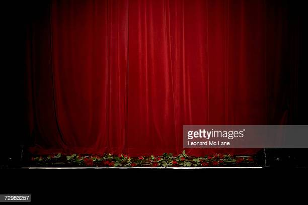 Red velvet theatre curtain, rose on stage