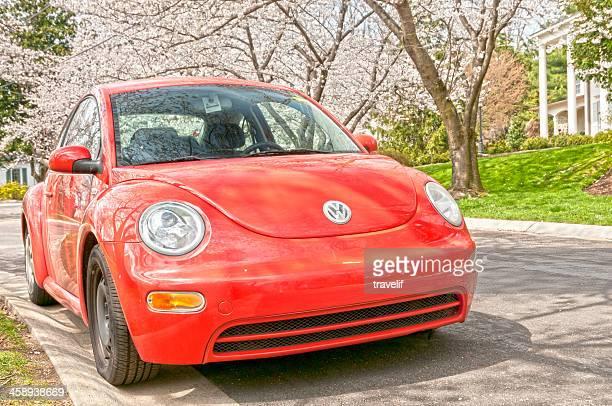 Neue rote Volkswagen Käfer unter blühende Bäume