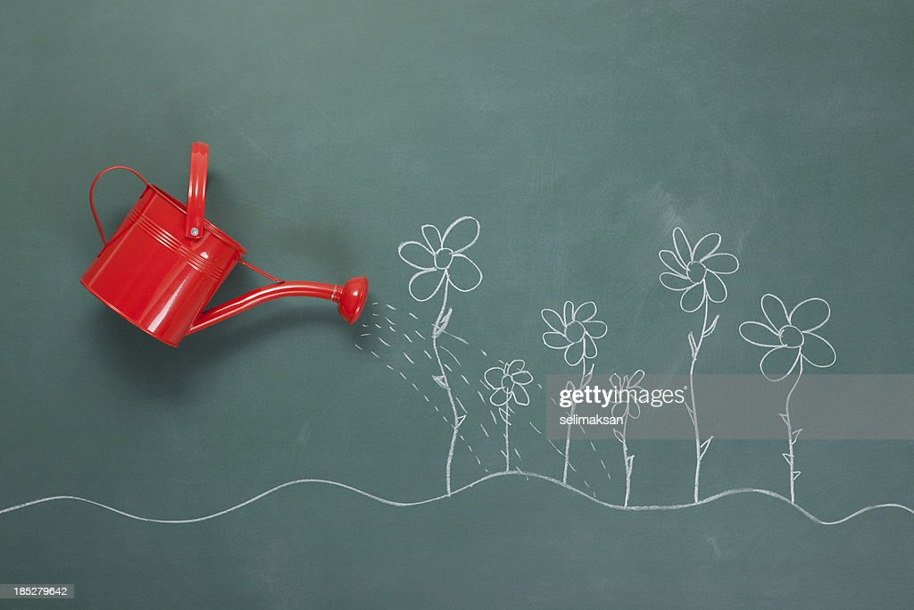 Red Watering Can And Flowers Drawings On Blackboard : Stock Photo